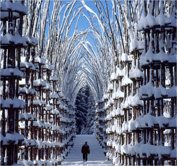 Snow Cathedral Giuliano Mauri