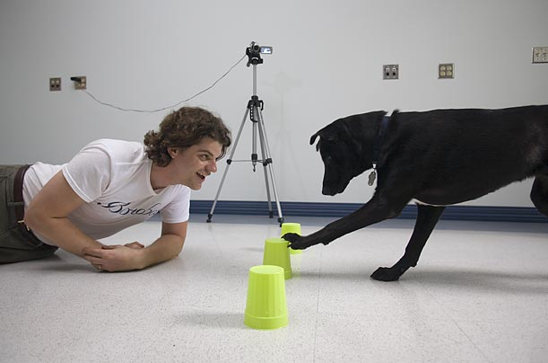 Duke Canine Cognition Center