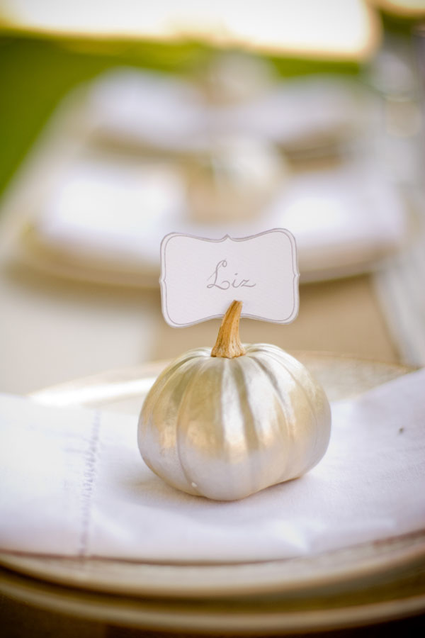 DIY Pumpkin Place Cards Everyday Occasions