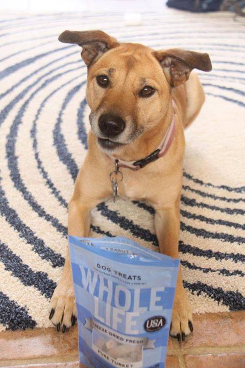 whole life pet products 5