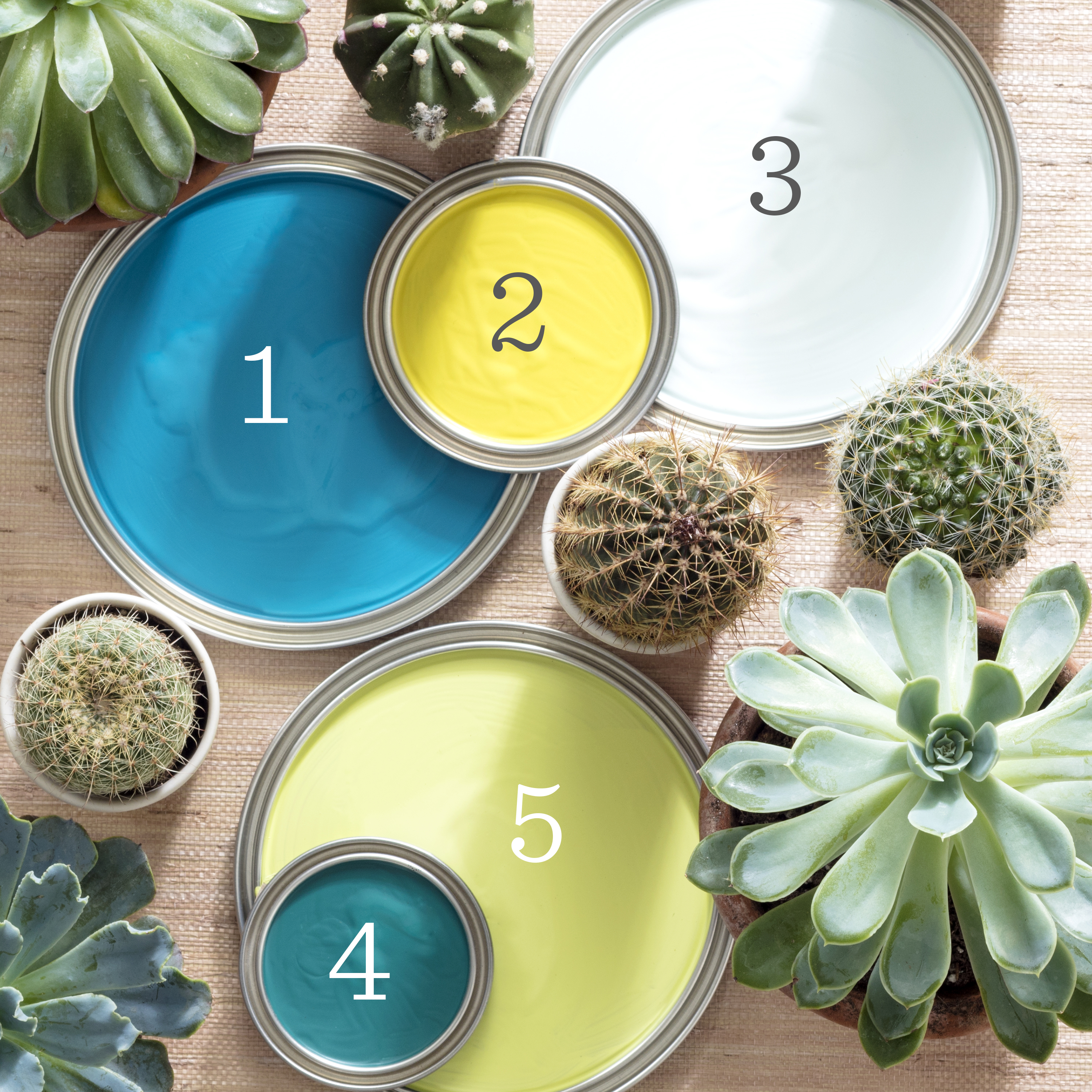 A Palm Springs-Inspired Paint Palette by Annie Selke | Fresh American Style