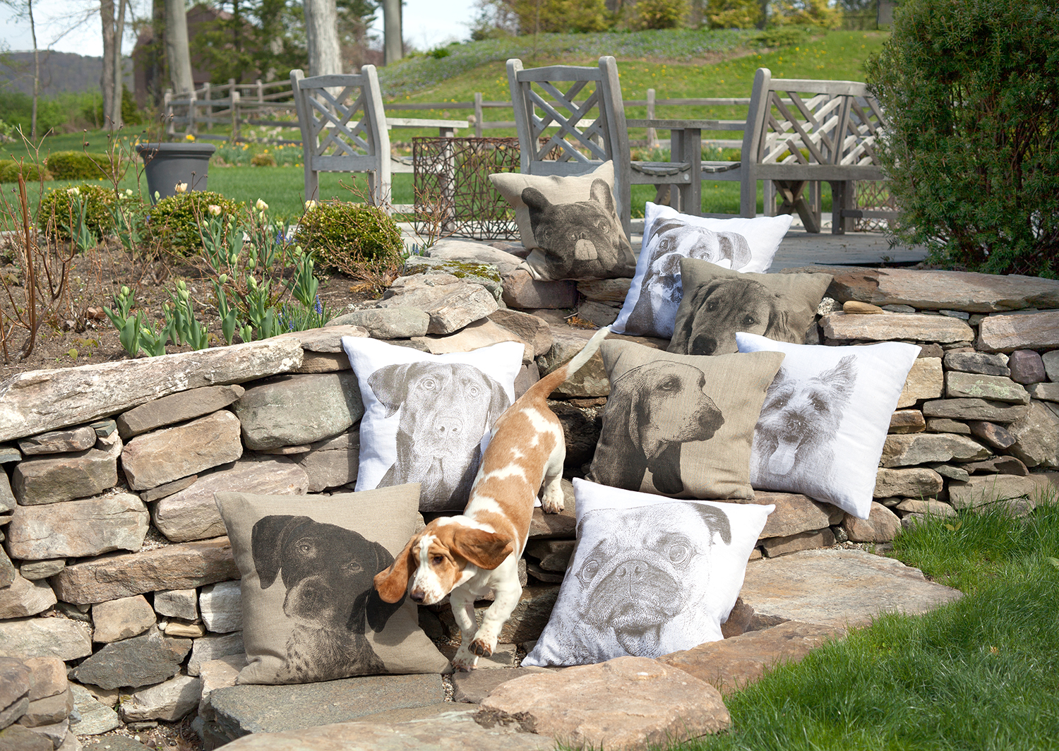Dog-Themed Decorative Pillows From Eric & Christopher