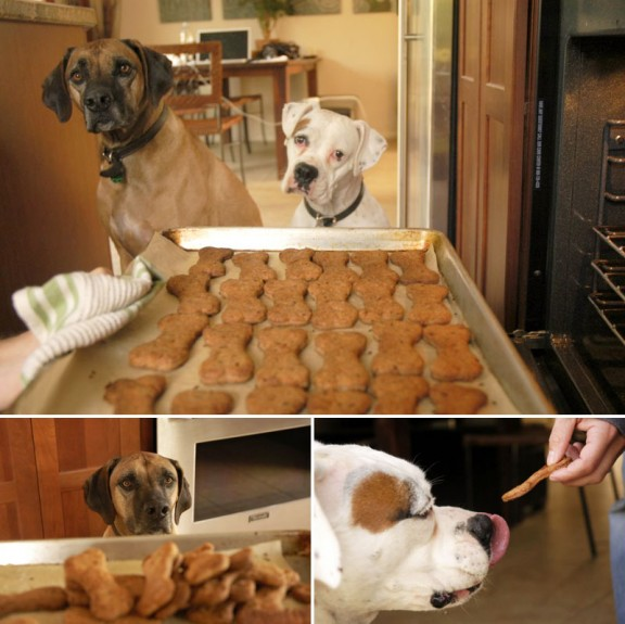 Homemade Flax Seed Dog Biscuits