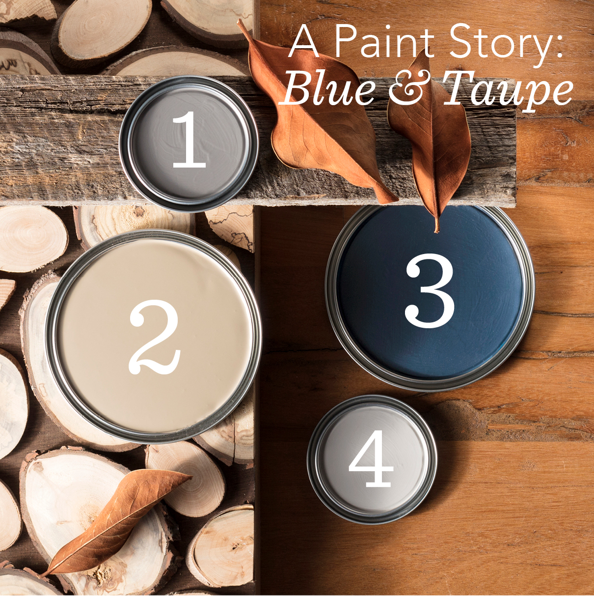 How We Hue: A Paint Palette Inspired by Our Autumn Collection   Annie Selke's Fresh American Style