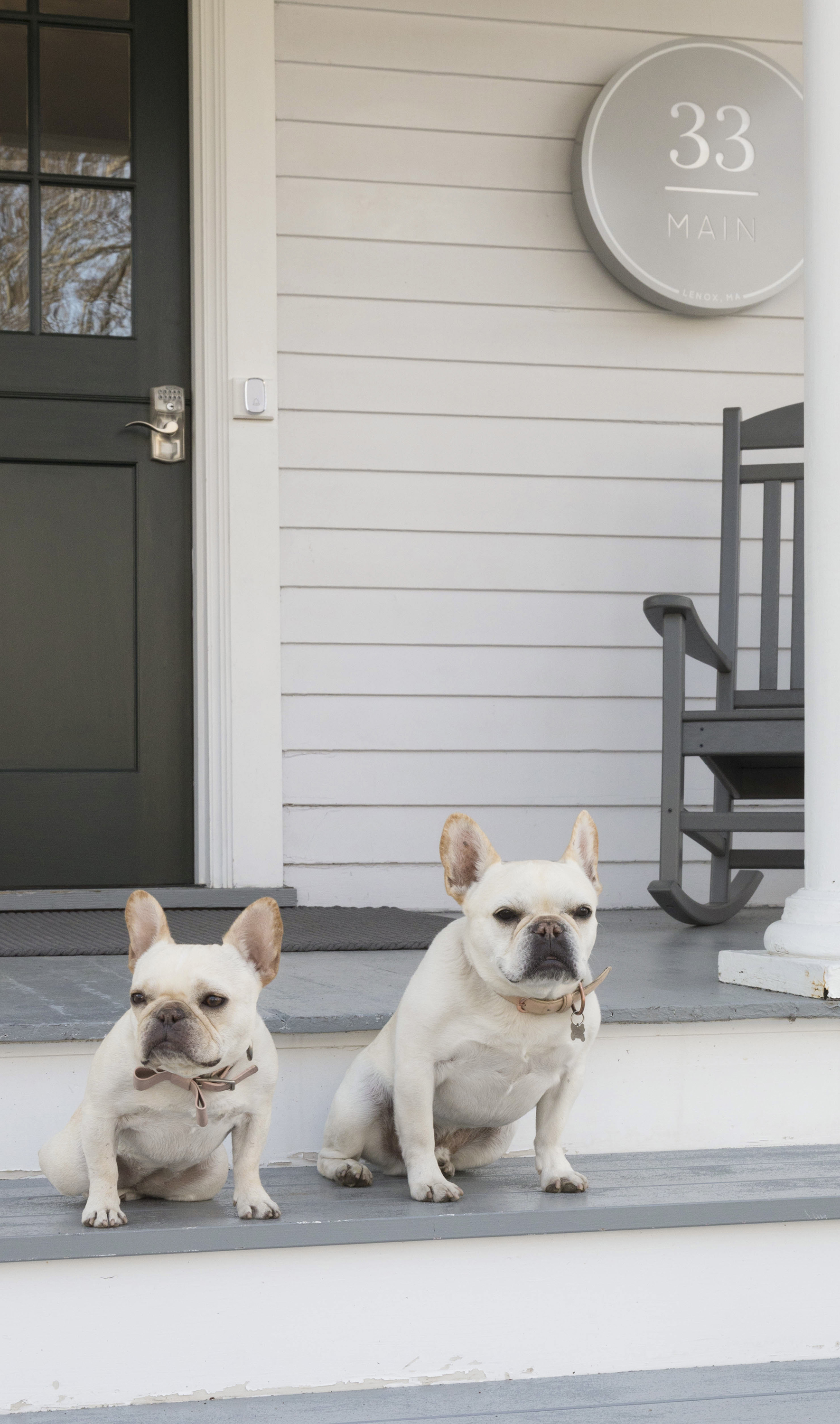 Yappy Hour at 33 Main | Annie Selke's Fresh American Style