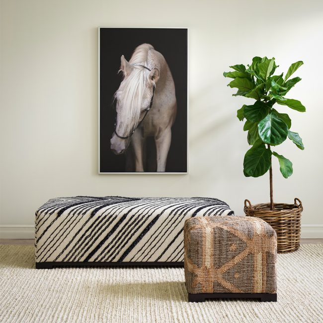 Go Wild! A new take on classic, sophisticated style.   Annie Selke's Fresh American Style